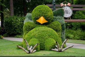 Impressive topiary sculptures