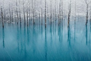 The Magnificent Pond in Hokkaido