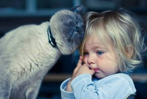 Adorable photos proving that your kids need a cat