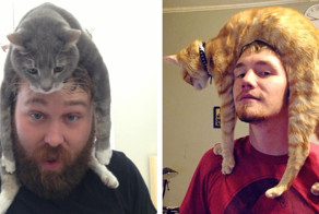 19 Pictures That'll Make You Want To Go Home And Put Your Cat On Your Head