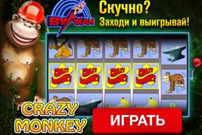 Кто хитрее – вы или обезьяна? Давайте проверим!