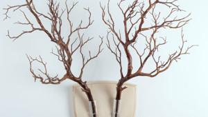Forget Dead Animals – Bring Your Walls To Life With This Plant Wall Tr
