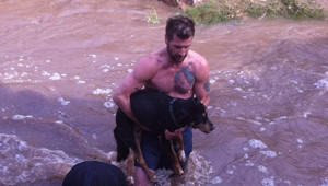Stranger Undresses And Jumps Into Cold River To Save Drowning 13-Year-Old Dog