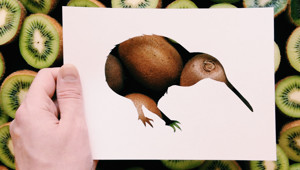 I Use Nature To Color Animal Paper Silhouettes