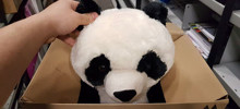Boy Writes Heartbreaking Note On Toy Panda Because His Mom Couldn't Afford To Buy It